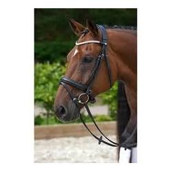Rembrant brida, Mountain Horse
