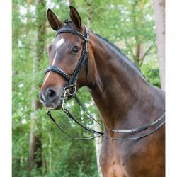 Matador brida filete/bocado Mountain Horse