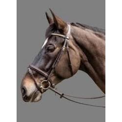 Milton bridle, Mountain Horse