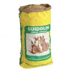 Pienso Guidolin Multihorse 30 kg